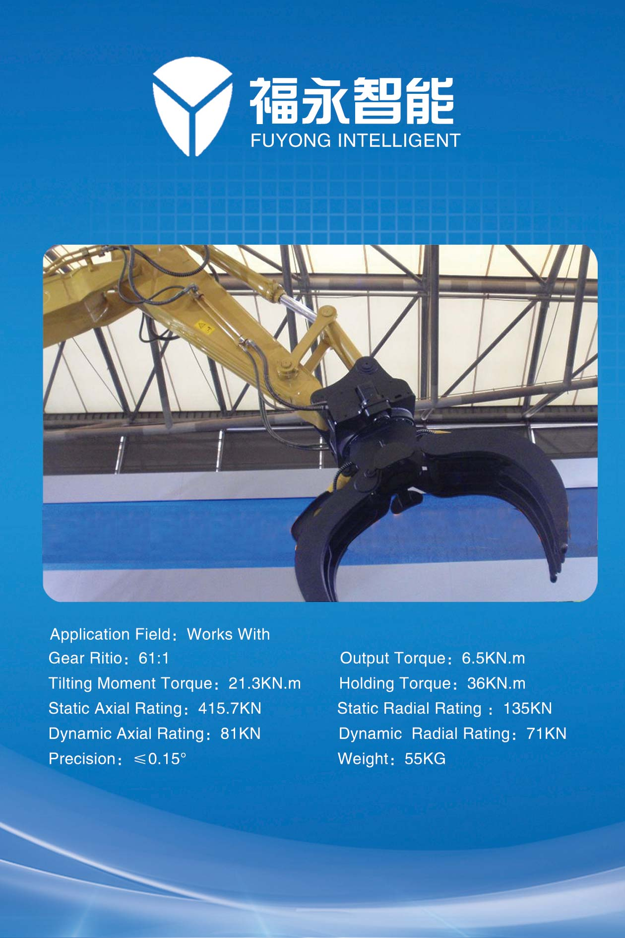 Engineering Machinery (Tower Crane Slewing Ring)